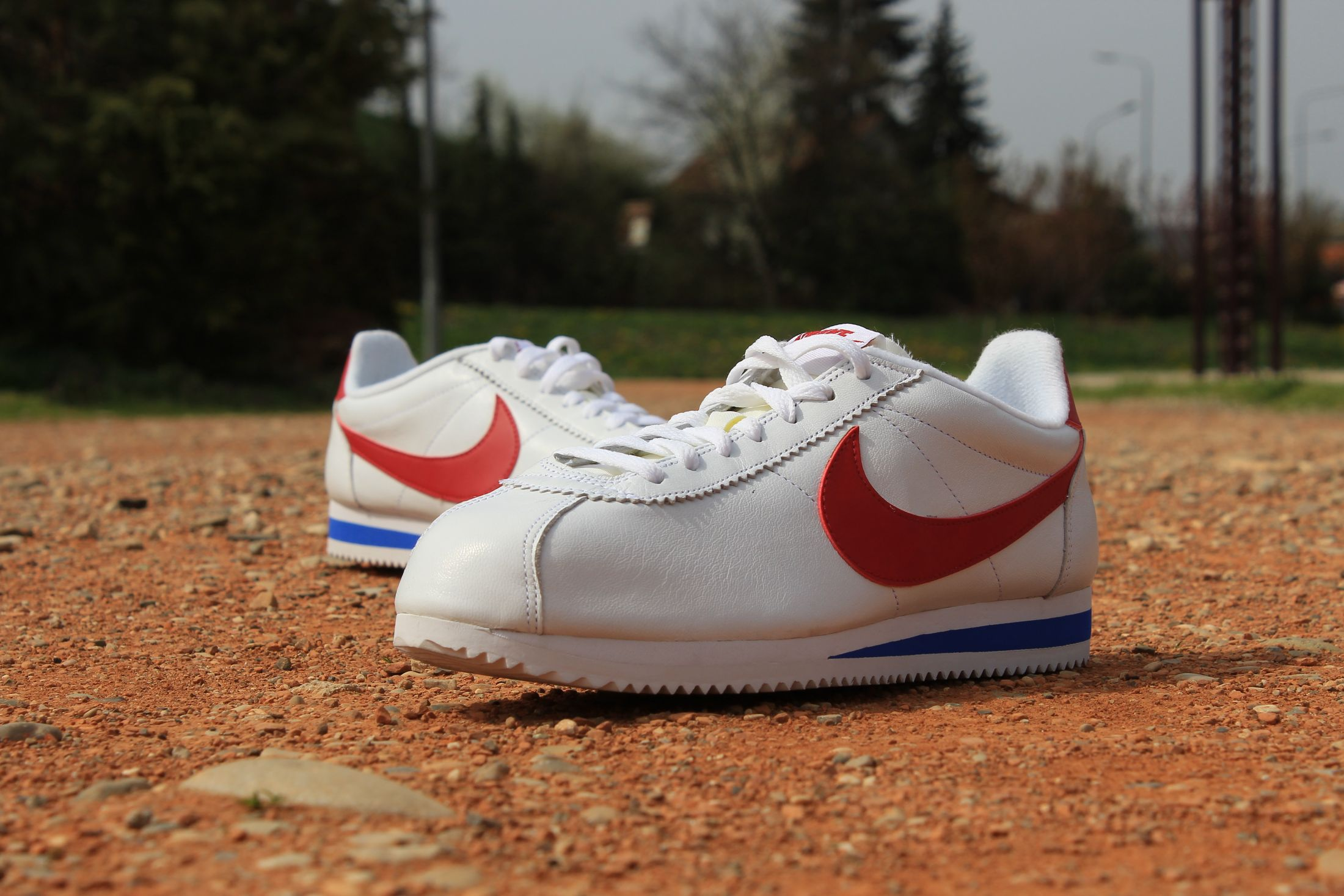 buzz sneakers nike cortez Shop Clothing