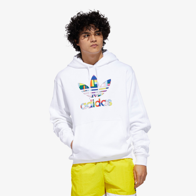 FLAG FILL HOODY