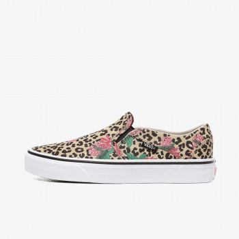 VANS Patike WM Asher
